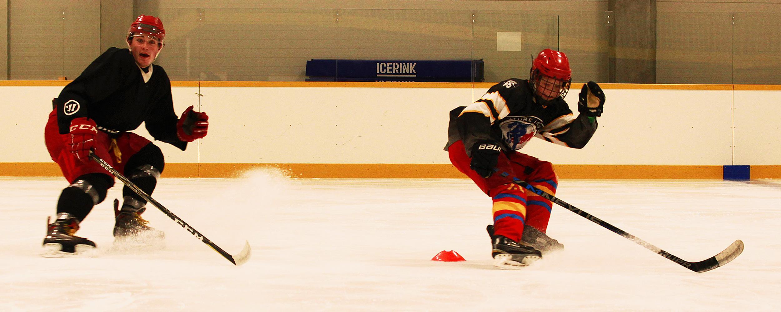 Hokejisti na individuelním tréninku